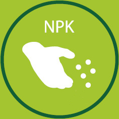 NPK_norm.jpg